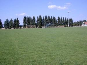 Rasenfläche nach renovation
