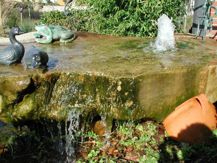 Teichanlagen Gartenteich Koi-Teich Schwimmteich Weyhausen (Gifhorn ...