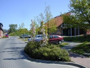 Bepflanzung Straßenbegleitgrün